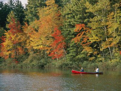 Father and Son Fish from a Canoe Amid the Autumn Foliage-Tim Laman-Framed Photographic Print
