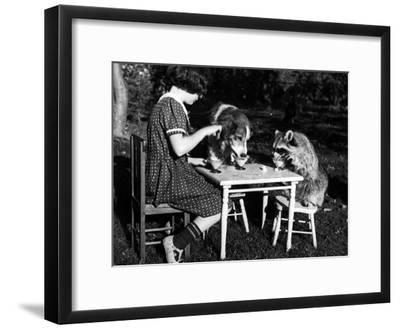 Claire Shorrock Giving Ice Cream Party with Pet Dog and Raccoon--Framed Photographic Print