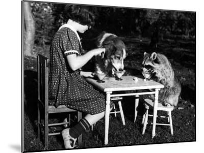 Claire Shorrock Giving Ice Cream Party with Pet Dog and Raccoon--Mounted Photographic Print