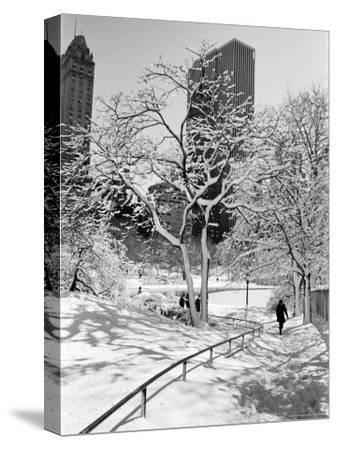 Central Park After a Snowstorm-Alfred Eisenstaedt-Stretched Canvas Print