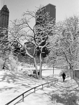 Central Park After a Snowstorm-Alfred Eisenstaedt-Premium Photographic Print