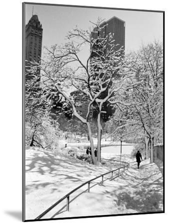 Central Park After a Snowstorm-Alfred Eisenstaedt-Mounted Premium Photographic Print