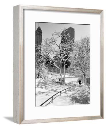 Central Park After a Snowstorm-Alfred Eisenstaedt-Framed Photographic Print