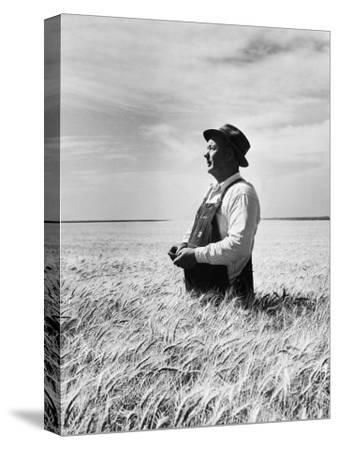 Farmer Posing in His Wheat Field-Ed Clark-Stretched Canvas Print