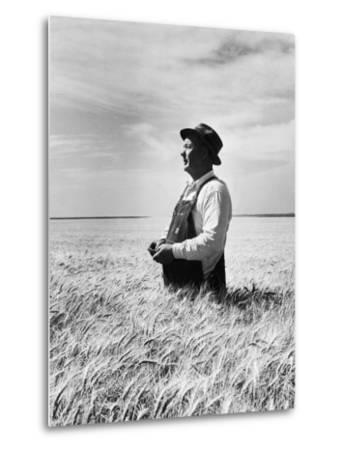 Farmer Posing in His Wheat Field-Ed Clark-Metal Print