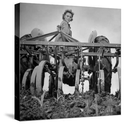 Patricia Colleen Altree Harrowing a Corn Field-J^ R^ Eyerman-Stretched Canvas Print
