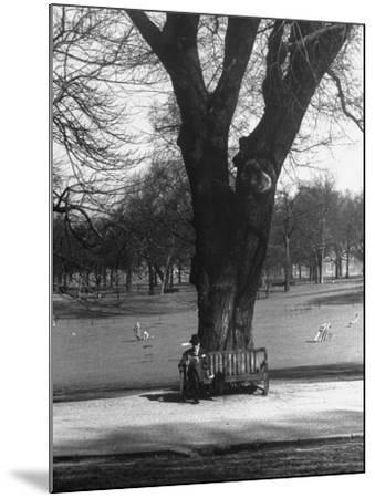 Man Sitting on a Bench and Reading a Newspaper in the Park-Cornell Capa-Mounted Photographic Print