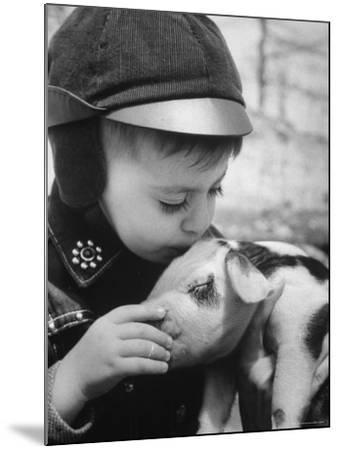 Little Boy Playing with Piglet on Farm in Kansas-Francis Miller-Mounted Photographic Print