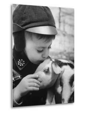 Little Boy Playing with Piglet on Farm in Kansas-Francis Miller-Metal Print
