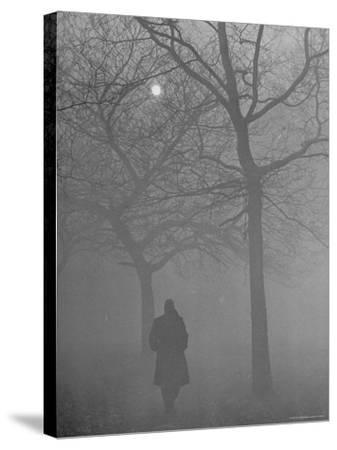 Man Walking Through Hyde Park in the Fog-Mark Kauffman-Stretched Canvas Print