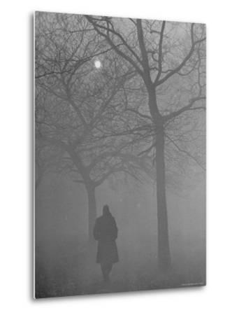 Man Walking Through Hyde Park in the Fog-Mark Kauffman-Metal Print