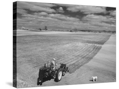 Spring Plowing in de Soto Kansas-Francis Miller-Stretched Canvas Print
