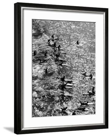 Surf Riders Surfing-Allan Grant-Framed Photographic Print