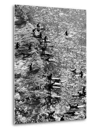 Surf Riders Surfing-Allan Grant-Metal Print