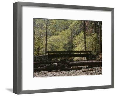 Footbridge over a Dry Stream in Yosemite-Marc Moritsch-Framed Photographic Print