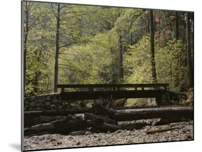 Footbridge over a Dry Stream in Yosemite-Marc Moritsch-Mounted Photographic Print