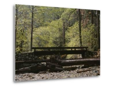 Footbridge over a Dry Stream in Yosemite-Marc Moritsch-Metal Print
