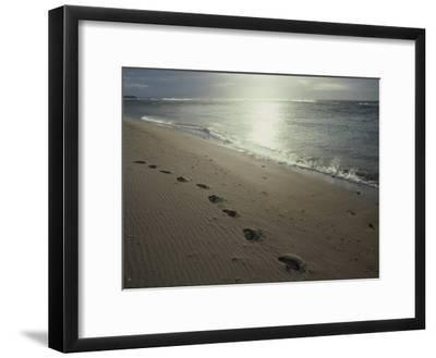 Footprints in the Sand on a Beach-Todd Gipstein-Framed Photographic Print