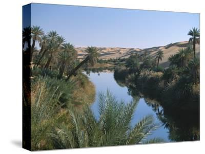 The Photographer Discovers an Oasis in the Middle of the Sahara Desert-Peter Carsten-Stretched Canvas Print