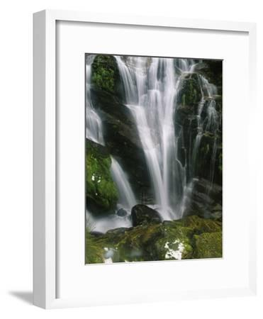 Small Waterfall Near the Milford Track on New Zealands South Island-Mark Cosslett-Framed Photographic Print