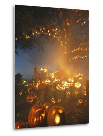 Grinning Lit Jack-O-Lanterns Surrounding and Filling a Tree-Richard Nowitz-Metal Print
