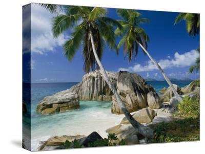 A Beach and Palm Trees on La Digue Island-Bill Curtsinger-Stretched Canvas Print