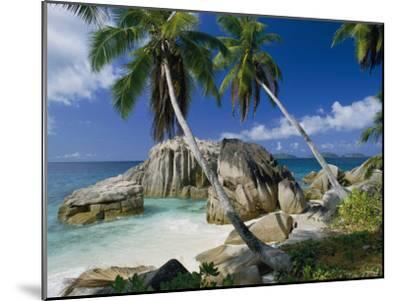 A Beach and Palm Trees on La Digue Island-Bill Curtsinger-Mounted Photographic Print