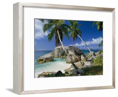 A Beach and Palm Trees on La Digue Island-Bill Curtsinger-Framed Photographic Print