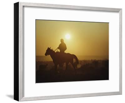 A Rancher Rounds up Sheep on a Wyoming Farm-Joel Sartore-Framed Photographic Print