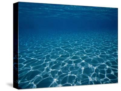 Sunlight Reflects on the Sea Floor Through Crystal Clear Blue Water-Raul Touzon-Stretched Canvas Print