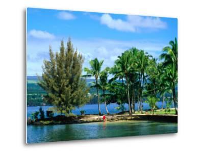 Coconut Island, a Small Island in Hilo Bay, Hawaii, USA-Ann Cecil-Metal Print