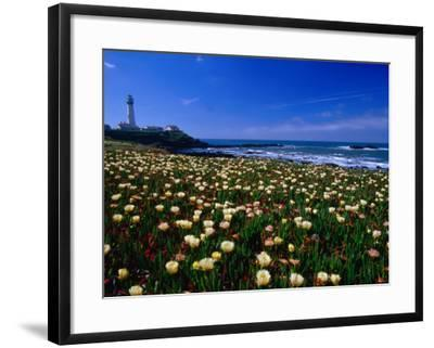 Pigeon Point Lighthouse of San Mateo County, with Wildflowers in Foreground, Sacramento, USA-Brent Winebrenner-Framed Photographic Print