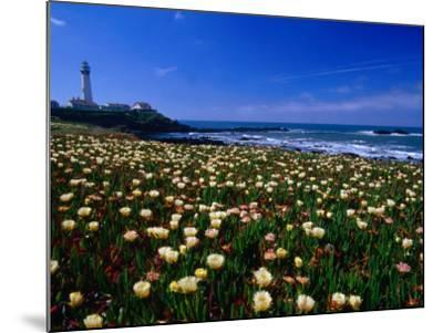 Pigeon Point Lighthouse of San Mateo County, with Wildflowers in Foreground, Sacramento, USA-Brent Winebrenner-Mounted Photographic Print
