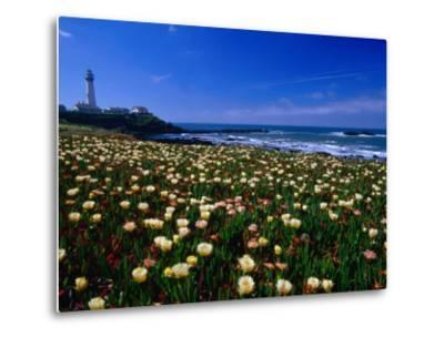 Pigeon Point Lighthouse of San Mateo County, with Wildflowers in Foreground, Sacramento, USA-Brent Winebrenner-Metal Print