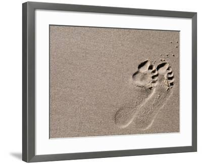 Footprints on Sand, Australia-Oliver Strewe-Framed Photographic Print