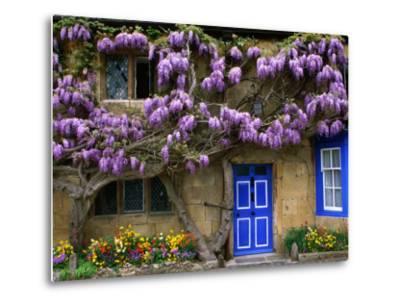 Cottage with Wisteria in Flower, Broadway, United Kingdom-Barbara Van Zanten-Metal Print