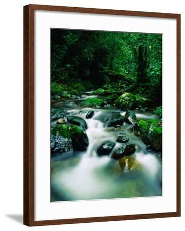 Liwagu River at Kinabalu National Park, Sabah, Malaysia-Mark Daffey-Framed Photographic Print