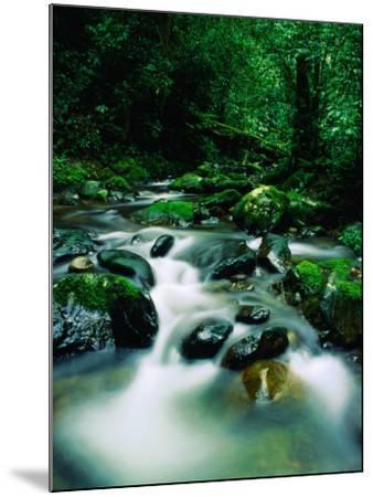 Liwagu River at Kinabalu National Park, Sabah, Malaysia-Mark Daffey-Mounted Photographic Print