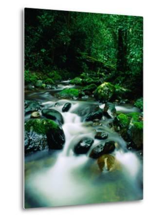 Liwagu River at Kinabalu National Park, Sabah, Malaysia-Mark Daffey-Metal Print