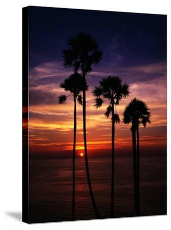 Sunset and Silhouetted Palm Trees at Phrom Thep Cape, Thailand-Manfred Gottschalk-Stretched Canvas Print