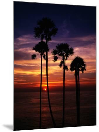 Sunset and Silhouetted Palm Trees at Phrom Thep Cape, Thailand-Manfred Gottschalk-Mounted Photographic Print