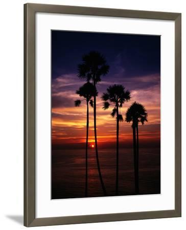 Sunset and Silhouetted Palm Trees at Phrom Thep Cape, Thailand-Manfred Gottschalk-Framed Photographic Print