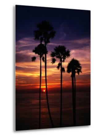 Sunset and Silhouetted Palm Trees at Phrom Thep Cape, Thailand-Manfred Gottschalk-Metal Print