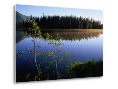 Trees Reflected in Lake Grand Teton National Park, Wyoming, USA-Rob Blakers-Metal Print