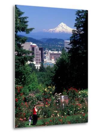 People at the Washington Park Rose Test Gardens with Mt Hood, Portland, Oregon, USA-Janis Miglavs-Metal Print