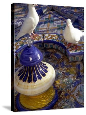 White Doves in Plaza Tiled Fountain, Sevilla, Spain-John & Lisa Merrill-Stretched Canvas Print