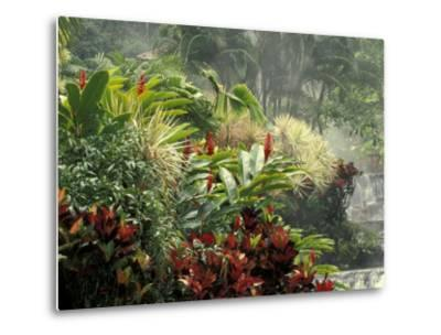 Woman at Tabacon Hot Springs near Arenal Volcano, Costa Rica-Stuart Westmoreland-Metal Print