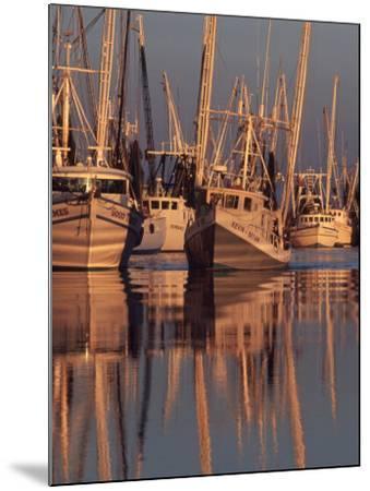 Shrimp Boats Tied to Dock, Darien, Georgia, USA-Joanne Wells-Mounted Photographic Print