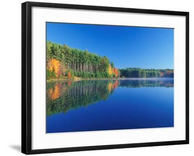 White Pines and Hardwoods, Meadow Lake, New Hampshire, USA-Jerry & Marcy Monkman-Framed Photographic Print