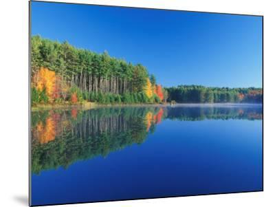 White Pines and Hardwoods, Meadow Lake, New Hampshire, USA-Jerry & Marcy Monkman-Mounted Photographic Print